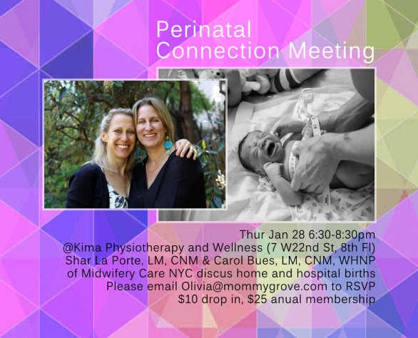 perinatal_connection